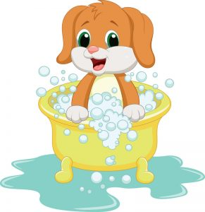 dog washing dog grooming